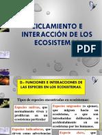 Ciclamiento e interaccion de los ecosistemas