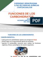 Funciones_Carbohidratos_2020