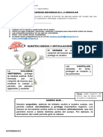 Ciencias - HUESOS n°3