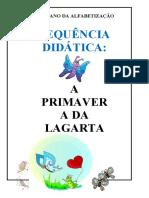Atividade Contextualizada A Primavera da Lagarta 3º ano.docx