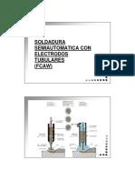 04_FCAW_20120306.pdf