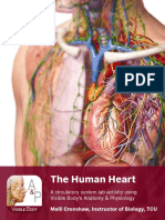 lab manual_human heart_a+p_student