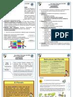 escenificación y deberes y derechos de la familia,párrafo.pdf