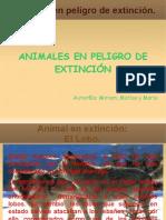 Presentación de los animales en extinción.