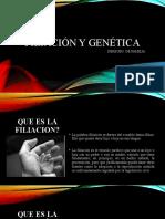 Filiación y genética