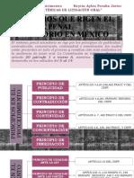 TEMA 1 INTRODUCCIÓN AL PROCESO PENAL ACUSATORIO_KEYRIN PERALTA.pptx