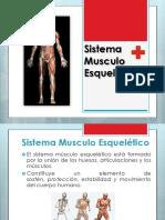sistemamusculoesqueltico-130908151156-