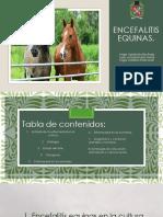 ENCEFALITIS EQUINAs.pptx.pdf