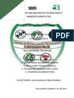 Elebpracion de Nieves tradicionales.pdf