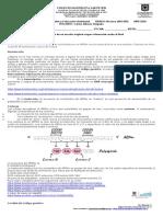 Guía 9° Código genético (4)