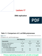 Lecture 17-Cell Biology