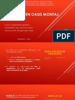 Filtros en oasis montaj.pdf