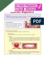 El-Aparato-Digestivo-para-Quinto-de-Primaria (1)