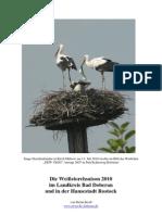 Jahresbericht2010