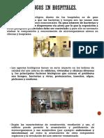 Importancia de los hongos para el hombre.pdf