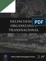 temariodelincuenciaorganizadadym