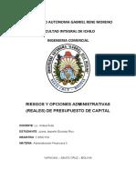 cuestionario riesgo y opciones administrativas (reales) de ppto de capital