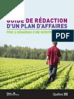 Guidederedactionplanaffaires