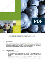 ARANANDANO FERTIRRIEGO.pdf