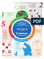 GEO5_V1_RUS_Aviagen Turkeys Top 5 Commitment Infographic.pdf