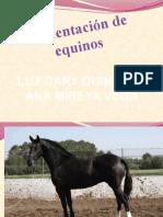 Alimentacion de equinos.pptx