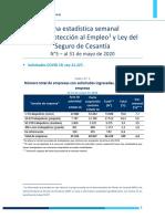 Informe Protección Empleo
