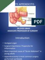 acuteappendicitislump-170323180143.pdf