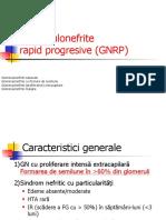 Curs 3-GNRP - final (1)