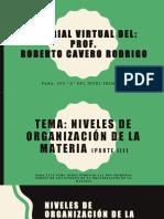 C y Tecnologia  Niveles de Organizacion De La Materia III.pptx