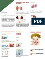 Elena Botina 7-2.pdf