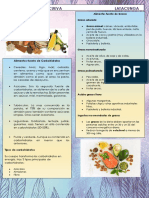 INFOGRAFIA A.V.pdf