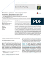 Potassium in agriculture – Status and perspectives