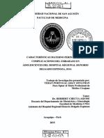 tesis posible.pdf