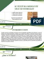 seminario prueba de Textura.pptx
