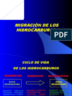 Cap 5 Migración.ppt