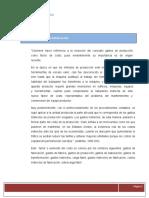 Gastos Indirectos de Fabricacion y Prorrateo Ige 2020