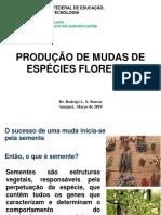 AULA 3 Produção de mudas de espécies florestais - Copia