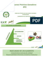 ICA - BPG MUNICIPIOS PDET