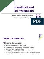 Accion Constitucional de Proteccion