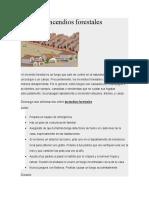 403116258-Incendios-forestales-docx.docx