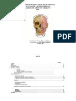 Anatomia 2011