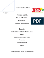 5. Concepcion y desarrollo fetal- 3.3 Desarrollo embrionario y fetal