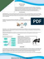 BIOCREATIVIDAD.pdf