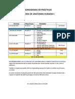 CRONOGRAMA DE PRÁCTICAS