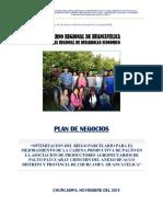 Plan de Negocio Paltos - Pauccaray Chinchin- Churcampa