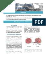 9.-placenta.pdf
