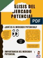 Análisis del mercado potencial diapositivas
