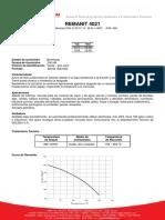 REMANIT4021.pdf