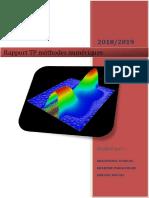rp2 (1).pdf