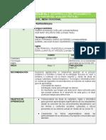 Guía 2 Castellano Ingles y Tecnologia 10°.pdf